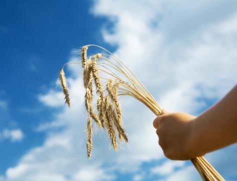 spiritual meaning of food