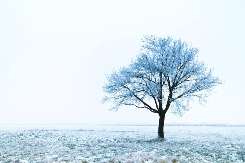 Spiritual Meaning Of Snow The Meaningful Life Center