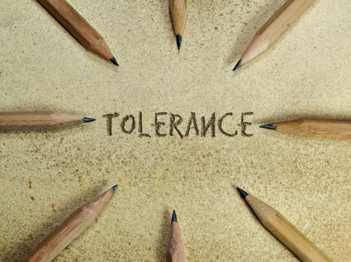 rule of law and tolerance politics essay This essay has been submitted by a law student this is not an example of the work written by our professional essay writers explain the rule of law.