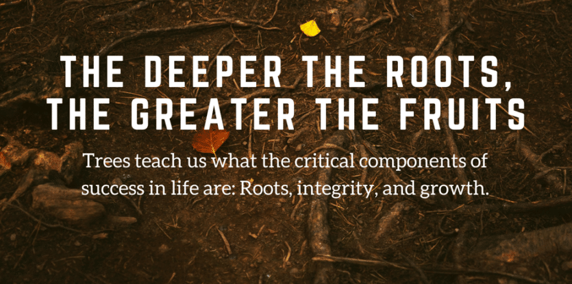 The Deeper The Roots The Greater The Fruits The Meaningful Life