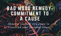 bad mood remedy commitment to a cause